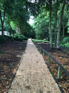 scaffolding and woodchip paths 008
